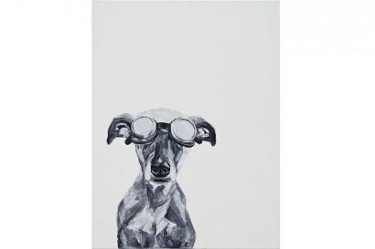 Szemüveges kutya I és II
